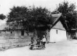 81. Magyar parasztgyerekek, Ásvány (Győr megye). Timkó Imre felvétele, 1904 (Néprajzi Múzeum, Budapest)