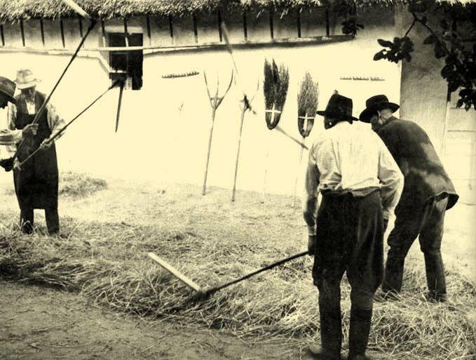Balassa Ortutay Hungarian Ethnography And Folklore