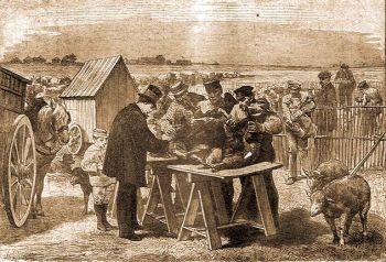 Pasteur juhokat ojt Pouilly-le-Fortban, 1881. máj. 31.